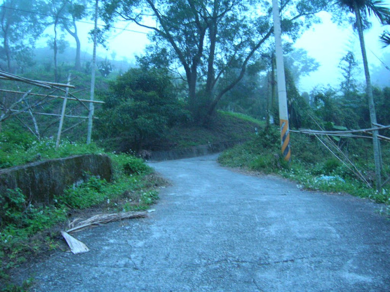 Photo: 慶福里五窯坑,向上坡看