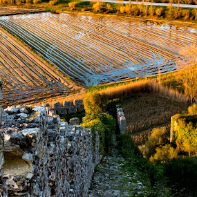 field by Edu Marques - Landscapes Sunsets & Sunrises ( terrain, old, ruin, agriculture, fine art, old building, landscape, photo, photography, anchor, field, walls, stairs, tree, nature, ruins, down, landscapes, wall )