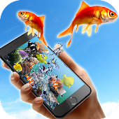 Fishes in phone
