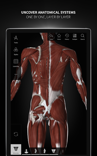 Anatomyka - Interactive 3D Human Anatomy 1.1.1 screenshots 14