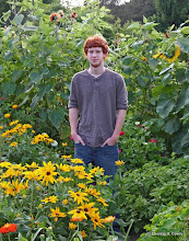Photo: Colin and the sunflowers
