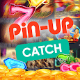 PIN-UP Catch icon