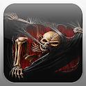 Devil Skeleton Fire Flames LWP icon