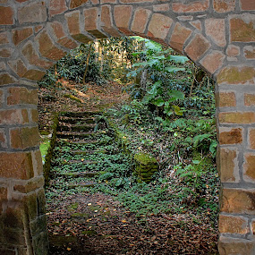 Doorway To Adventure by William Stewart - Landscapes Forests ( nature, buildings, stone, door, forest, scenery )