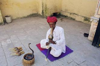 Photo: Charmeur de serpents au Rajasthan