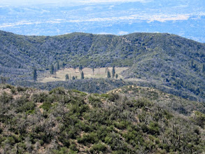 Photo: Zoomed-in view south toward Browns Flat in the San Dimas Experimental Forest