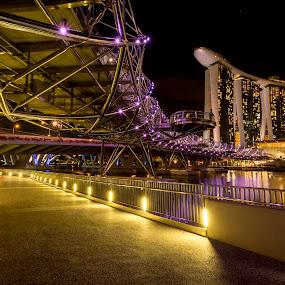 The Helix Bridge by Martin Yon - Buildings & Architecture Architectural Detail ( helix bridge, helix, mbs, marina bay sands, bridge, singapore, nightscape, city )