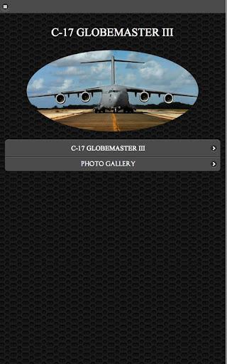 C - 17 ミリタリー カーゴ 無料