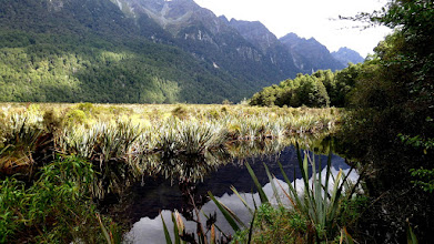 Photo: Mirror Lake in the Eglinton Valley is designated a world heritage site.