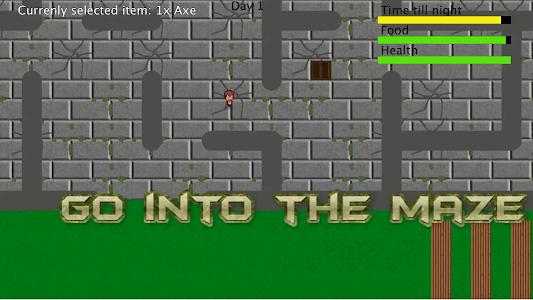 Escape the Maze screenshot 1