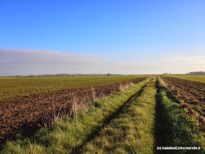 Photo: Chemin d'Iclon