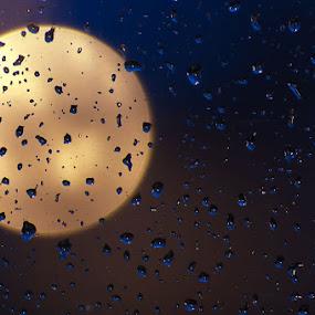 Rainy window by Mark Denham - Abstract Fine Art ( window, raindrops, bokeh )