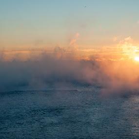 2017 last Sunrise by Jack Noble - Landscapes Sunsets & Sunrises ( last sunrise, toronto, december 31 2017, -31°c, photography, lake ontario, jack nobre, winter, nature, cold, fog, freezing cold, sunrise,  )