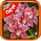 Beautiful Flower Live Wall icon