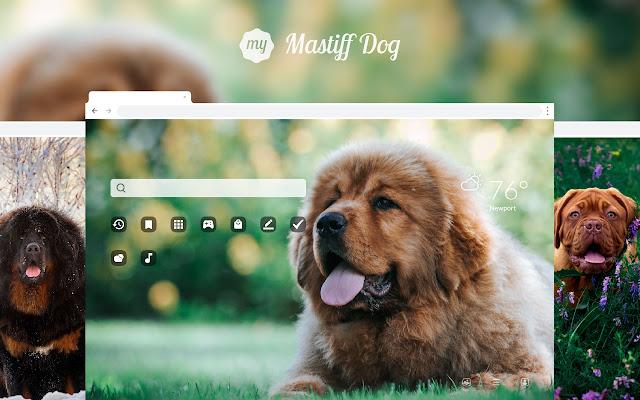 My Mastiff Dog & Puppy HD Wallpapers New Tab