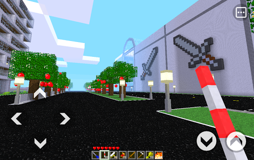 PlayCraft 3D Screenshot
