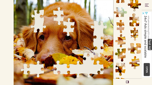 Puzzle+ Nature screenshot 1