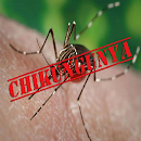 Chikungunya Treatment v 1.0