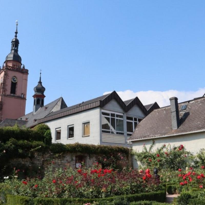 【世界の絶景】ドイツ・ライン川湖畔に佇むバラの町「エルトヴィレ」ローズガーデン