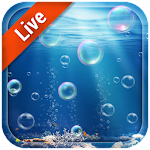 3D Moving Bubble Live Wallpaper Icon