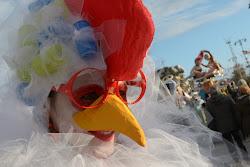 la gallina coccodè