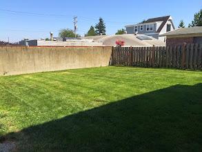 Photo: After - Backyard