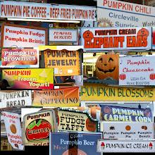 Photo: Everything pumpkin!
