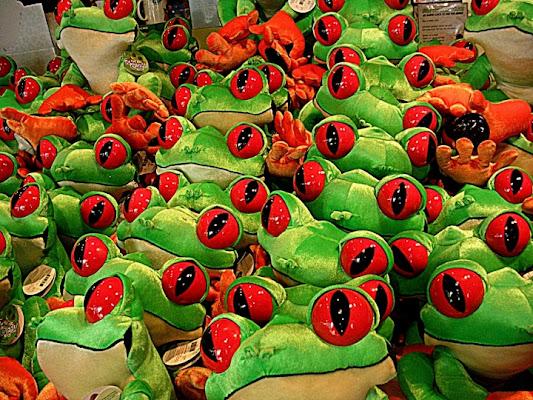 Invasione di rane. di BananaJoe