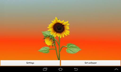 3D Sunflower Live Wallpaper screenshot 1 ...