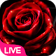 Neon Red Rose Live Wallpaper Download for PC Windows 10/8/7