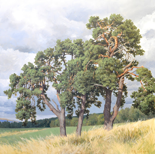 Three pines. oil on canvas , 80x80cm