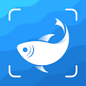 Picture Fish - Fish Identifier icon