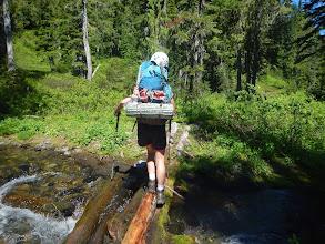 Photo: Slippery log crossing