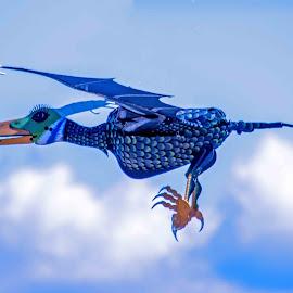 Pterosaur by Will McNamee - Digital Art Things ( mcnamee2169@yahoo.com, danielmcnamee@comcast.net, aundiram@msn.com,  )