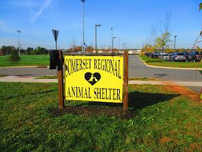 Photo: 6th & 7th rain garden for 2015 - Somerset Regional Animal Shelter Installed October 2015