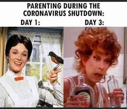 reality of home schooling during coronavirus meme - mary poppins vs carol burnett