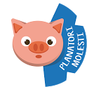Pig's Forecast icon