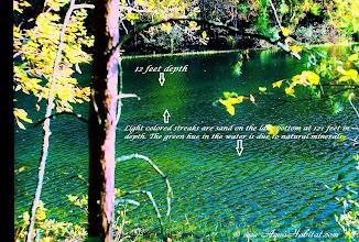 Photo: Southern lake details