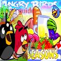 Guide Angrybirds season icon