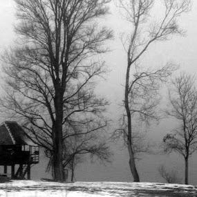 Black and whitw landscape by Gordana Djokic - Landscapes Prairies, Meadows & Fields ( mono-tone, b&w, nature, black and white, b and w, house, monotone, landscape, river, fields )