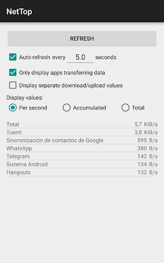 NetTop: RealTime Network Meter screenshot 1