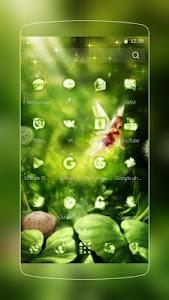 Green Forest Fairy screenshot 1