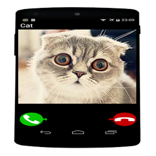 Call from cat - náhled