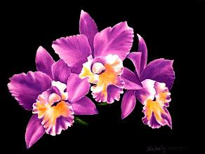 Photo: 426, Нетронина Наталья, Серия Цветочный калейдоскоп -Орхидея сиреневая, Масло, замша (живопись по бархату), 40х30см,