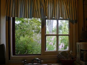 Photo: kitchen window