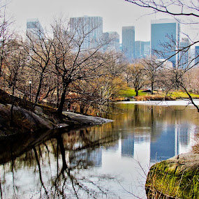 Central Park by Fabio Ferraro - Travel Locations Landmarks ( park, manhattan, new york, ny, central park )
