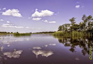 Photo: Nederland - natuur - watergebieden Foto: Cees Boom