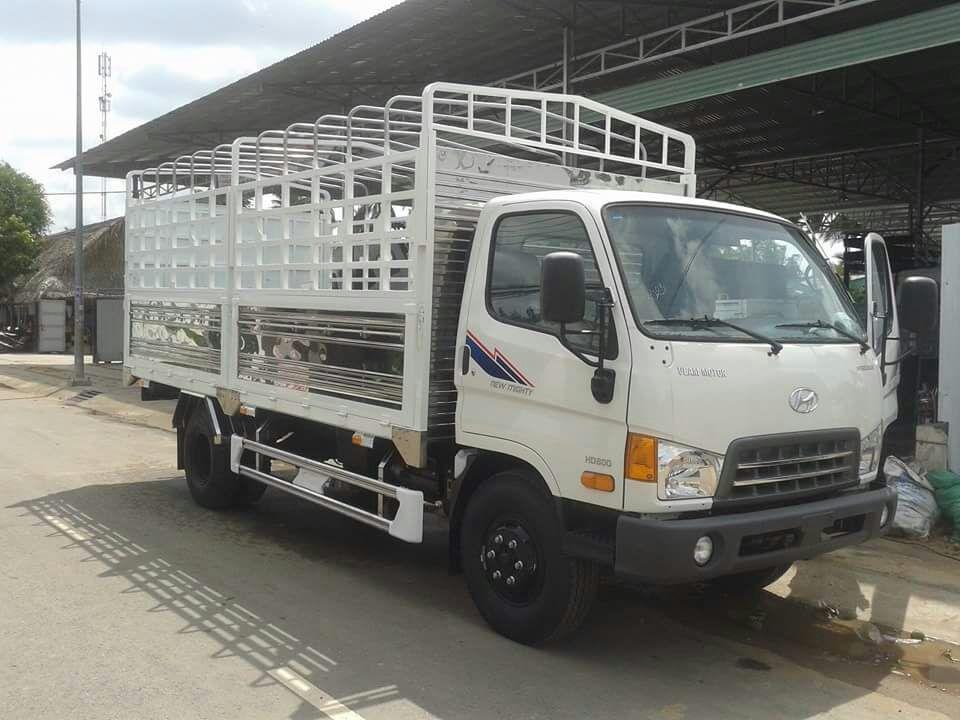xe-veam-hd800.jpg
