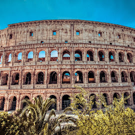 The Colosseum by Leah Varney - Buildings & Architecture Public & Historical ( history, historic districts, building, colosseum, ancient, hdr, rome, old city, buildings, architecture, historical, old building )