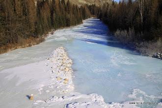 Photo: Многочисленные ручьи промерзли до дна